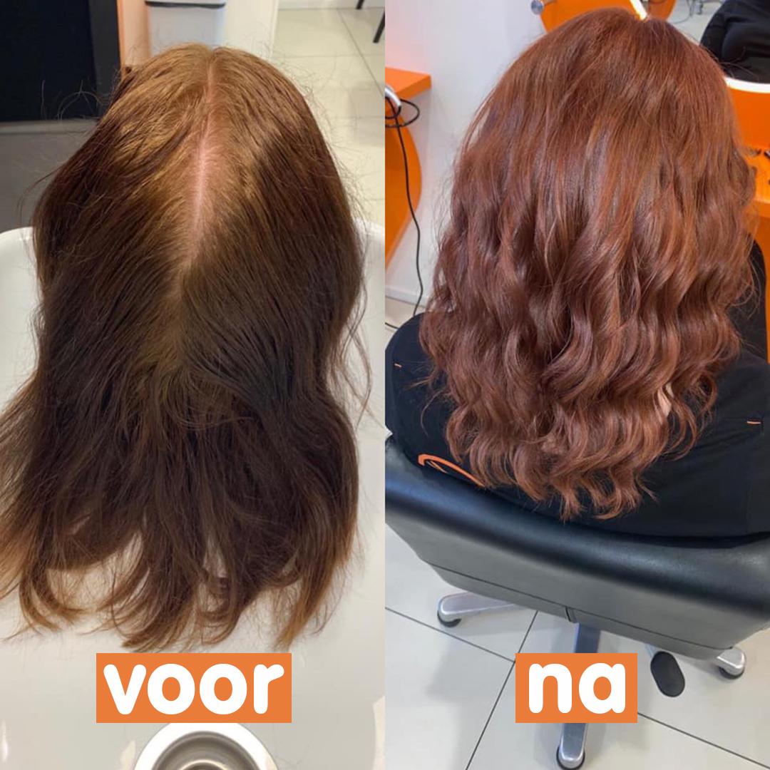 Welp Hair make-over - Brainwash Kappers LQ-24